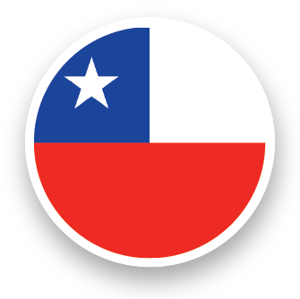 Contacto Chile Alebrigma