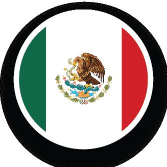 Contacto México Alebrigma